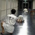 廊下トレーニング